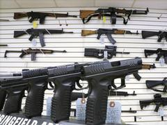 Kansas Governor Signs Bill Nullifying Gun Control